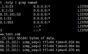 Centos7.x DNS服务器部署