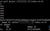 使用Nexus3.x搭建Docker私有仓库